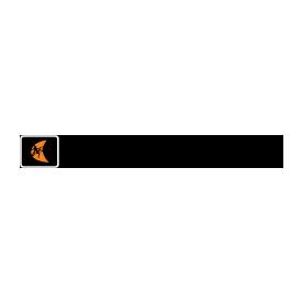 ditch-witch-logo-ex